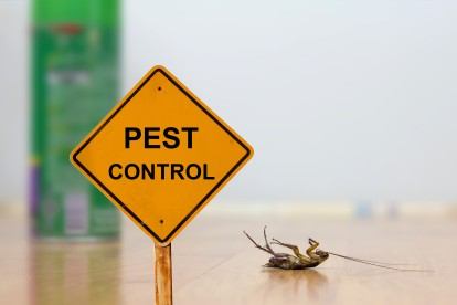 Pest Contol in Warlingham, Chelsham, CR6. Call Now 020 8166 9746