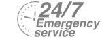 24/7 Emergency Service Pest Control in Warlingham, Chelsham, CR6. Call Now! 020 8166 9746